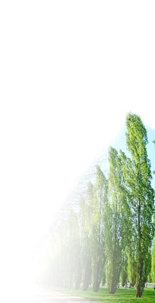 绿树小房子logo