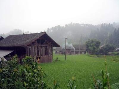 农业供给侧改革