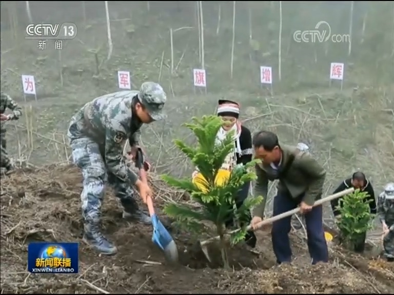 杜富国受伤后,扫雷队的官兵们擦干眼泪,在这个雷场又奋战了36天,部队将安全土地移交后,当地群众在杜富国受伤的地方种下了一棵常青树。