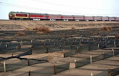 """临策铁路采用了人工清沙、挖截沙沟、筑挡沙墙以及编制""""高、中、低""""尼龙网格相配套的阻沙方式同时在防沙网格中种下"""