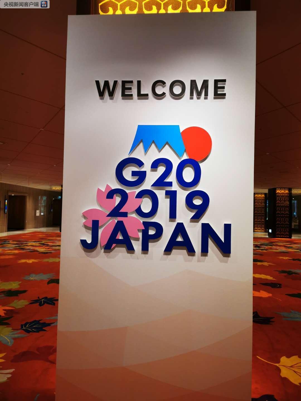 """G20峰会标志牌。标志由象征着日本的富士山、太阳和樱花等元素构成。富士山的""""山顶""""和""""朝日""""象征着增长和繁荣。山脚下,盛开的樱花代表着春天,寄托了人们对全球经济繁荣增长的美好期待(央视记者荆伟拍摄)"""