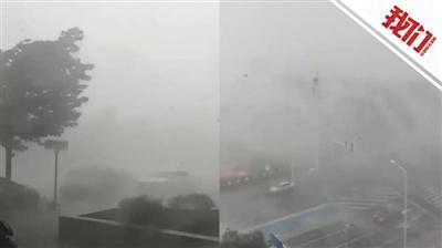 郑州狂风暴雨树木左摇右摆 网友:今天是泼水节吗?