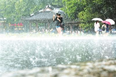"""台风""""白鹿""""降雨不降温"""