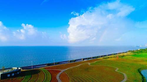 启东新湖・海上明珠四季花海实景