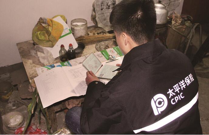 """中国太保产险河北分公司:""""防贫保""""从源头上筑起""""防贫堤"""""""