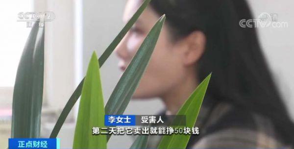 受害人 李女士:2000多块钱就买了100股,第二天把它卖出就能挣50块钱。