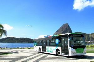 二月-参加一场巴西的狂欢,邂逅亚马逊雨林的风情