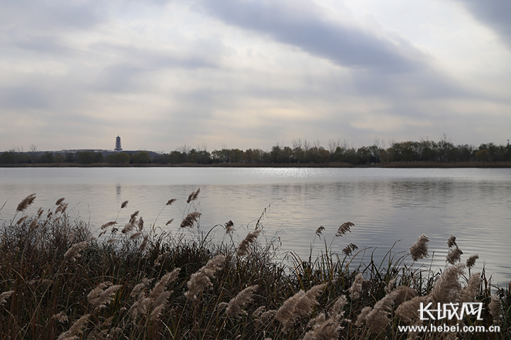 """""""2+26""""城市PM2.5浓度改善幅度排名出炉 前10名河北占7个"""