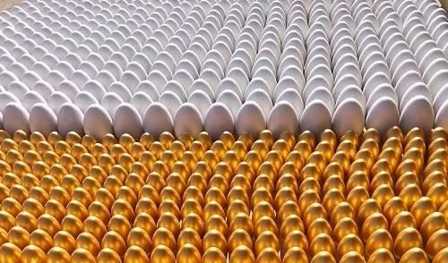 金蛋产业转折了许多村民。