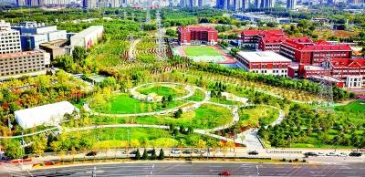 朝阳按下和谐宜居国际化城区建设