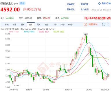 独家专访张贺才:产业危机与机遇共存 油脂市场将迎新变局