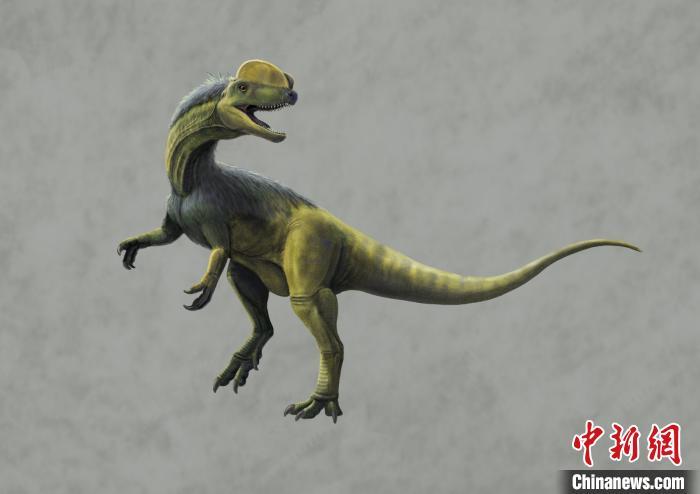 重庆发现亚洲保存最好的侏罗纪卡岩塔足迹群