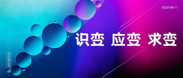 中国大地保险:识变、应变、求变