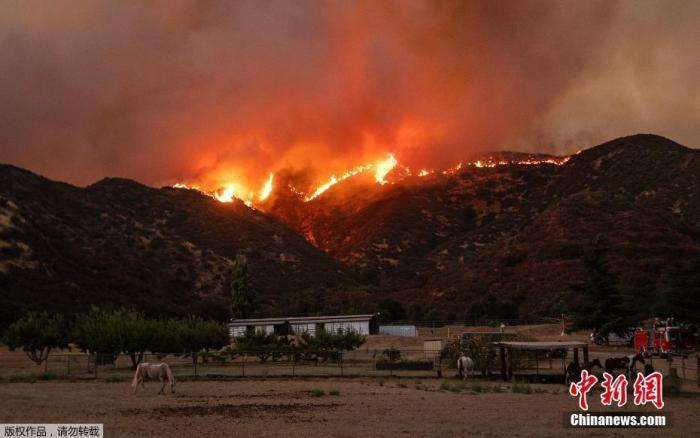 美国加州多地发生山火 高温加剧火势蔓延