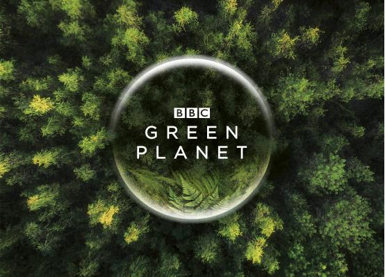B站与BBC达成战略合作,将联合出品《绿色星球》等独家内容