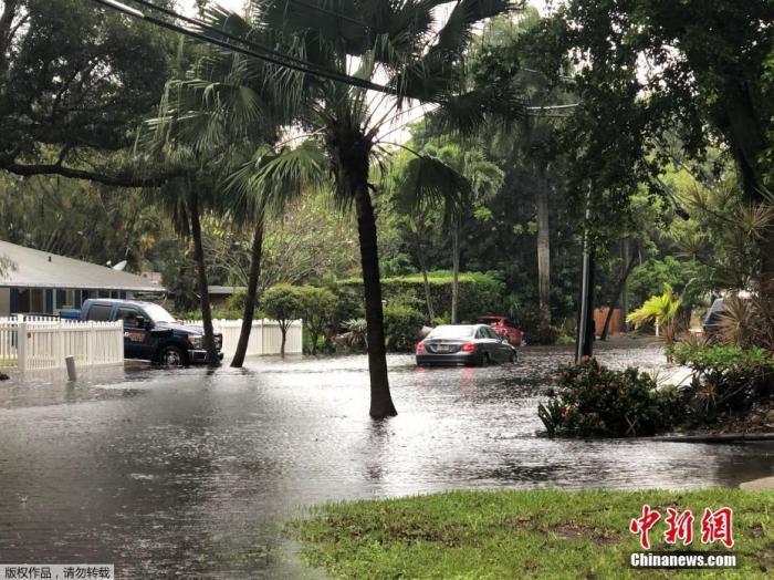 """飓风""""埃塔""""减弱为热带风暴 将在墨西哥湾北部登陆"""