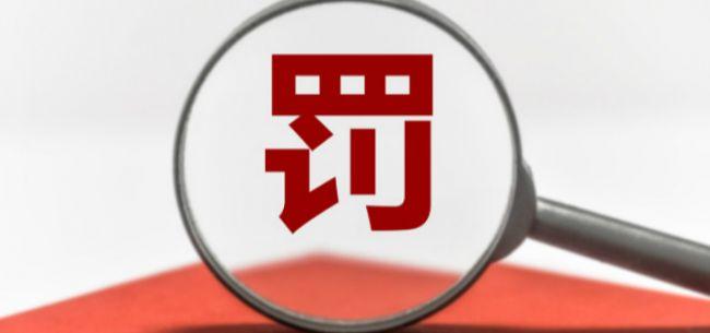 """电银付app安装教程(dianyinzhifu.com):京东、天猫、唯品会涉""""双11""""时代不正当价钱行为 被市场监管总局划分处以50万元行政处罚"""