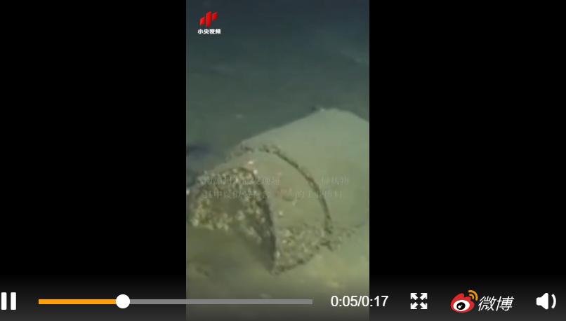 洛杉矶附近海底发现2.7万桶疑似杀虫剂DDT废料,且已泄漏!当地海狮患癌与此物质有关