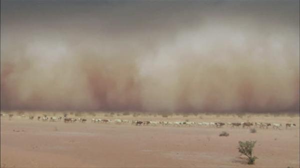 为何今年沙尘大风天气频发?专家解释