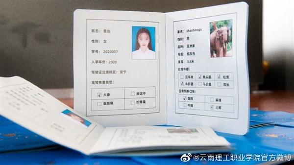 云南一高校给新生发大象驾驶证 网友:云南人骑大象上学实锤了